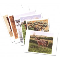 Package B Notecard Set