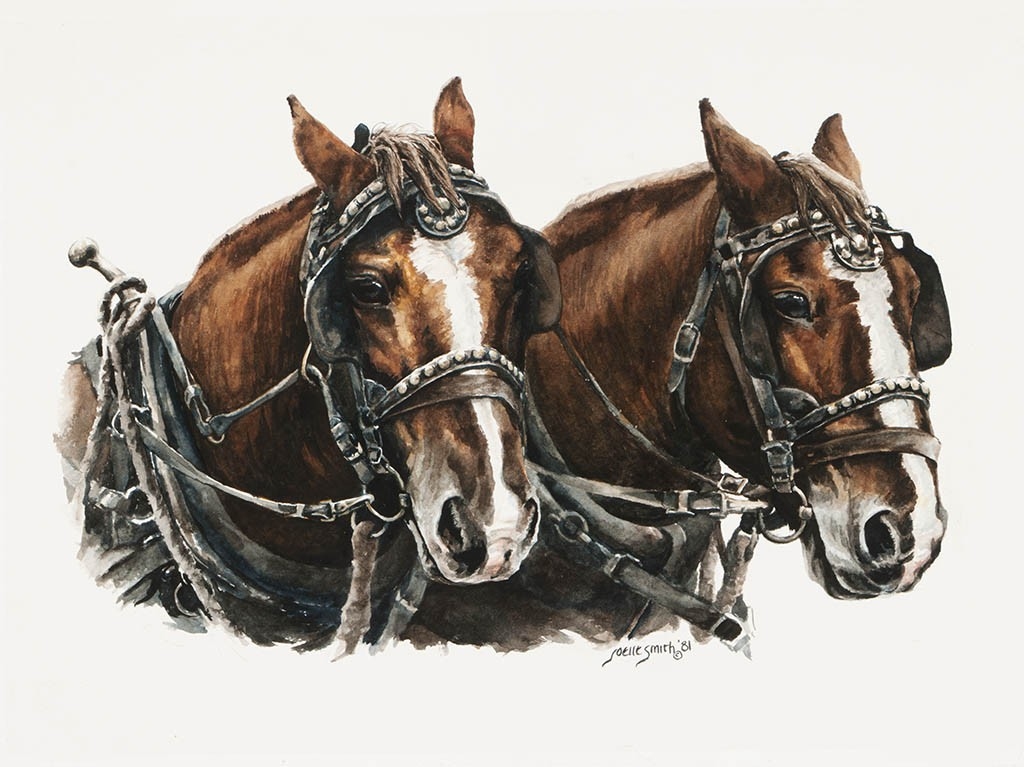 Joelle Smith - Draft Horses