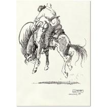 Bucking Horse Rider (2)