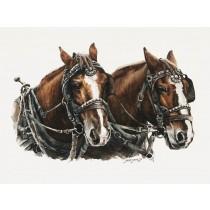 Joelle Smith - Draft Horses