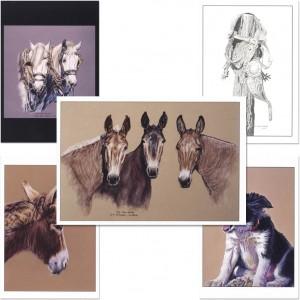 Mules, etc Notecard Set